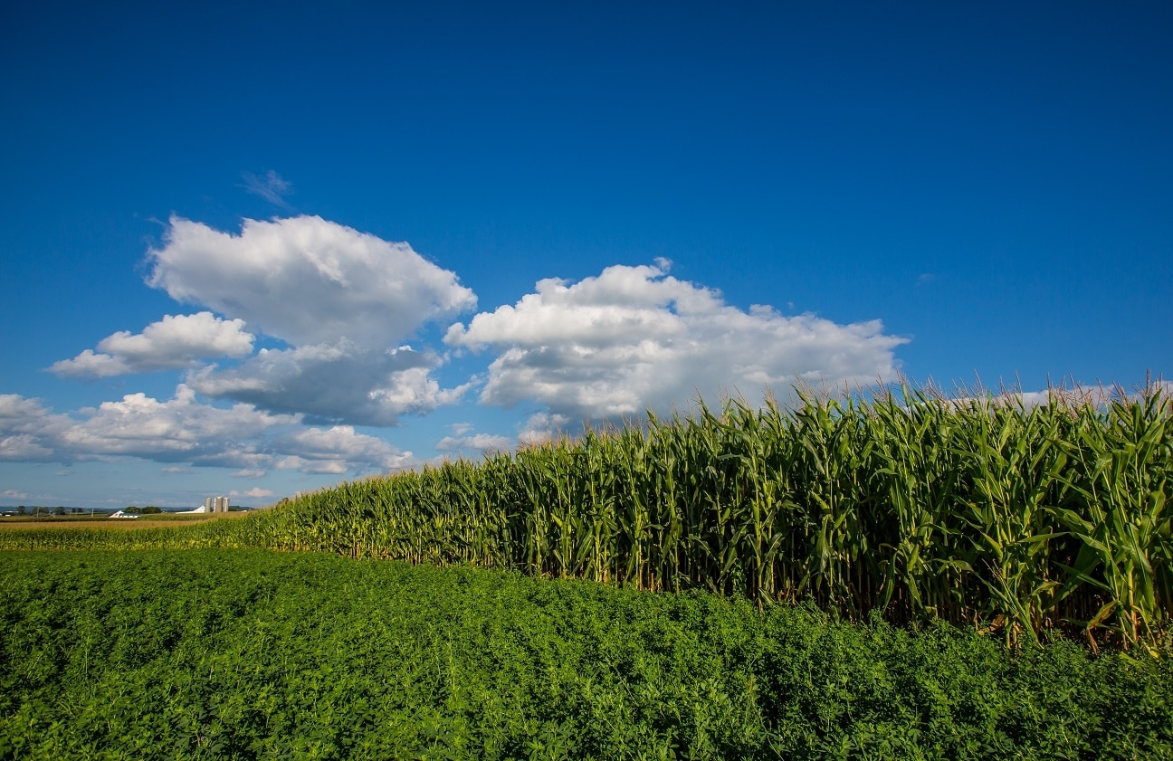Farmland Preservation Attorneys in New Jersey